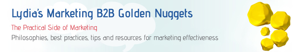 Lydia's Marketing B2B Golden Nuggets